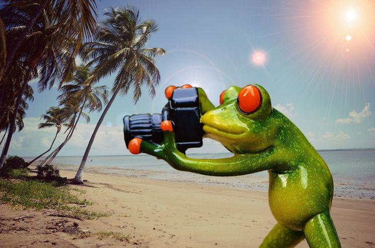Die Ferien stehen kurz bevor und für einige geht es bestimmt in den Urlaub. Mit diesem Blogartikel stellen wir Ihnen mobile Drucker vor, die sich für Sie vielleicht zum perfekten Reisebegleiter entpuppen könnten.