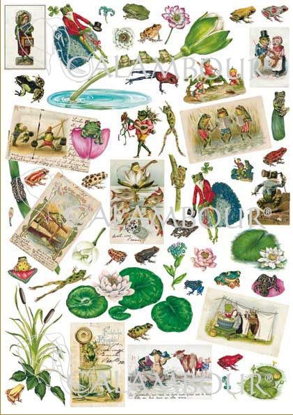 CAL 278 - Calambour Paper for classic Decoupage. Pattern : cards with white or pink water lilies and green and red frogs: singing, washing, catching bugs or holding a guitar. Details: measures 50 x 70 cm, printing on 80 gr/mq paper sheet