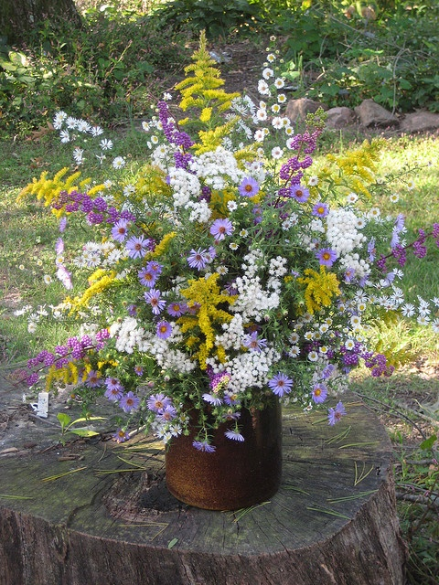 Bouquet For Church Late Summer Aster And Autumn