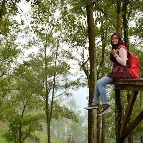 Bosan dengan bisingnya kota??? Saatnya cari ketenangan dalam sepi.  Lokasi hutan Pinus batu Foto dari mbak kece @shasa_45    www.bromokita.com  #bromokita #traveling #like4like #holidays #tourist #jungkook #pink #instagood #trip #batu #malang