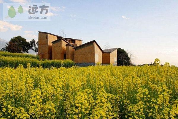 仅是设计就令人拍案惊叹的精美博物馆-凤凰新闻