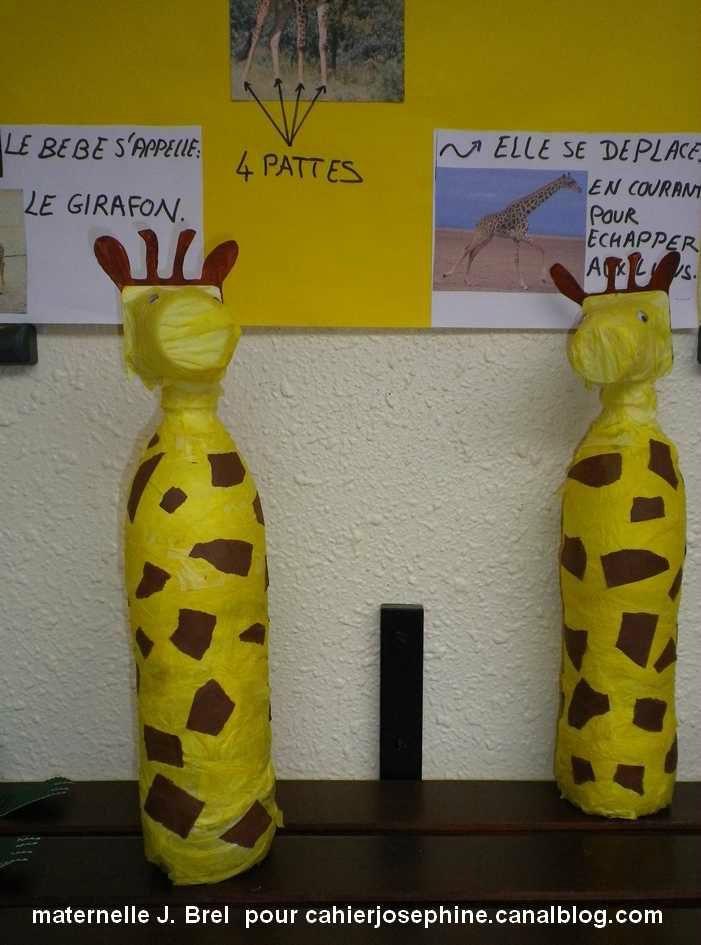 Girafes d'envasos de plàstic