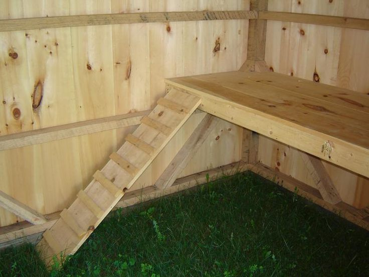 goat sheds | GOAT-SHEDS Steps and Platform for Goats