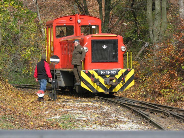 Szilvásvárad Szalajka-völgyi erdei vasút (Szilvásvárad) http://www.turabazis.hu/latnivalok_ismerteto_5181 #latnivalo #szilvasvarad #turabazis #hungary #magyarorszag #travel #tura #turista #kirandulas