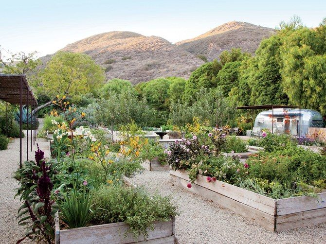 Take a look at the thoughts of #LandscapeArchitects on the newest #GardenTrends! http://qoo.ly/jj3ff Learn more at http://ift.tt/2lqiJ8m