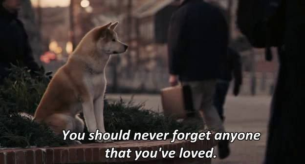 """You should never forget anyone that you've loved.""  - Hachi: A Dog's Tale ( Hachiko ) 2009."