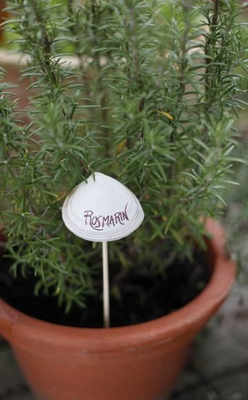 Kreative Pflanzenstecker selber basteln