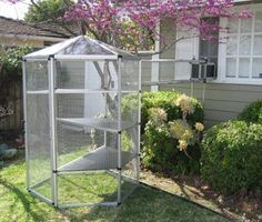 How to Buy an Outdoor Cat Enclosure Cheap thumbnail