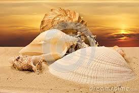 Φυγή-Γ.Σεφέρης  Δεν ήταν άλλη η αγάπη μας έφευγε ξαναγύριζε και μας έφερνε ένα χαμηλωμένο βλέφαρο πολύ μακρινό ένα χαμόγελο μαρμαρωμένο, χαμένο μέσα στο πρωινό χορτάρι ένα παράξενο κοχύλι που δοκίμαζε να το εξηγήσει επίμονα η ψυχή μας.