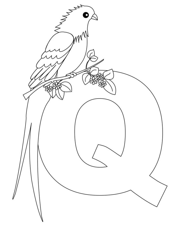 alphabet coloring pages letter q