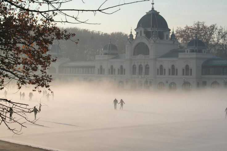 Europe's most gorgeous outdoor rink? At Budapest's City Park and an article about the best skating rinks
