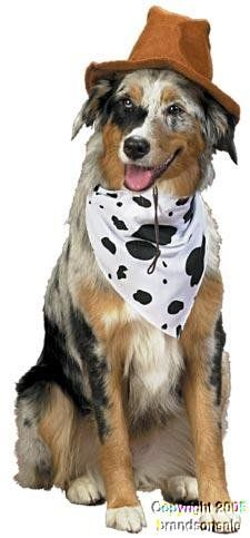 Pet Western Cowboy Dog Costume For Large Dogs - http://www.thepuppy.org/pet-western-cowboy-dog-costume-for-large-dogs/