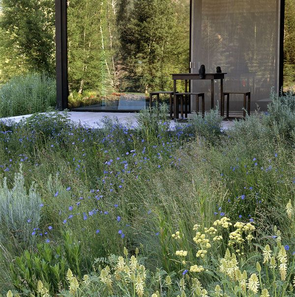 My kind of aesthetic - Ketchum Residence and garden - Lutsko Associates