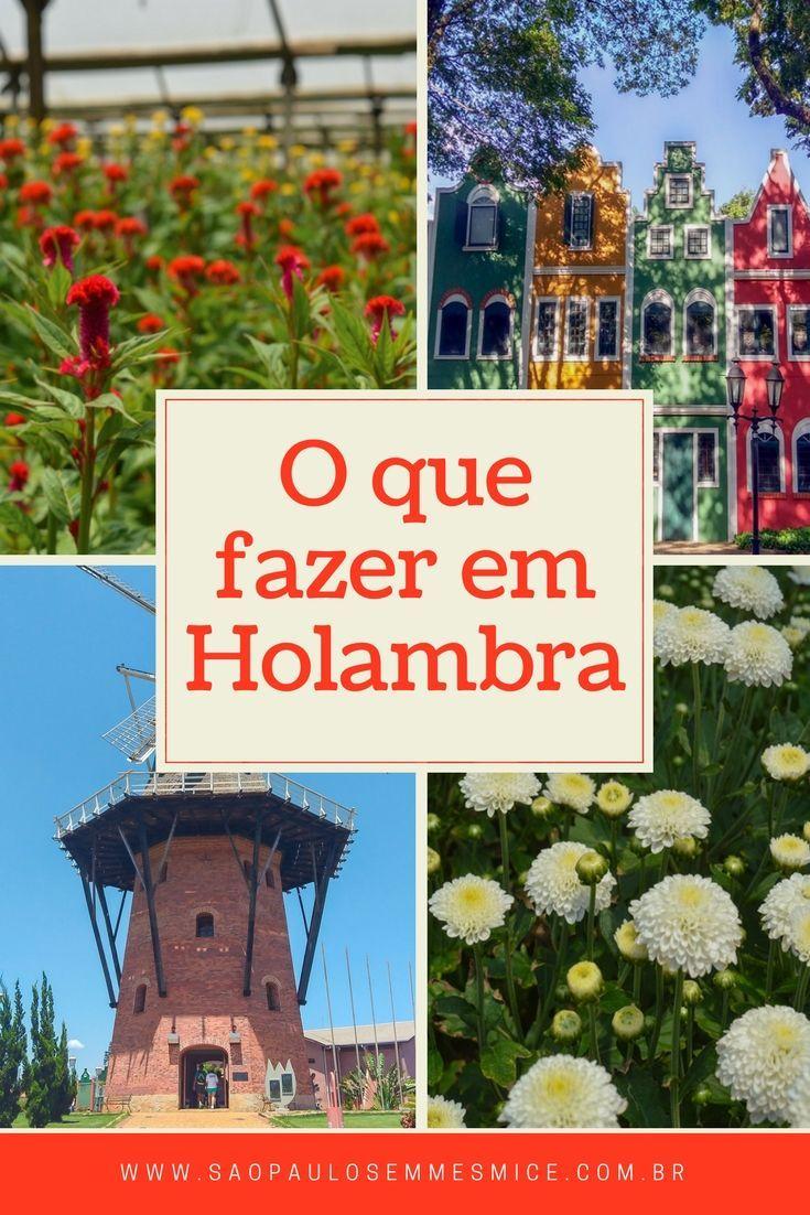 Saiba o que fazer em Holambra a cidade das flores que  é famosa pela Expoflora. A cidade está a poucas horas de São Paulo, sendo uma ótima opção para uma viagem de final de semana ou até um bate e volta saindo da capital de São Paulo, programe uma viagem e conheça um pedaço da Holanda no Brasil.| Viaje Holambra- São Paulo