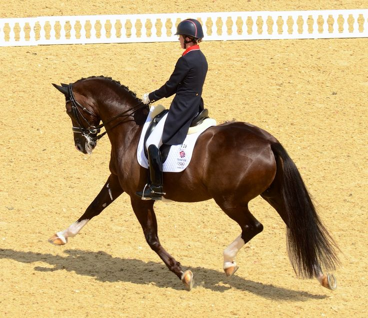 "That's an olympic ""10"" on the extended trot!! Go ahead Charlotte! Also, LOVING The helmet!"