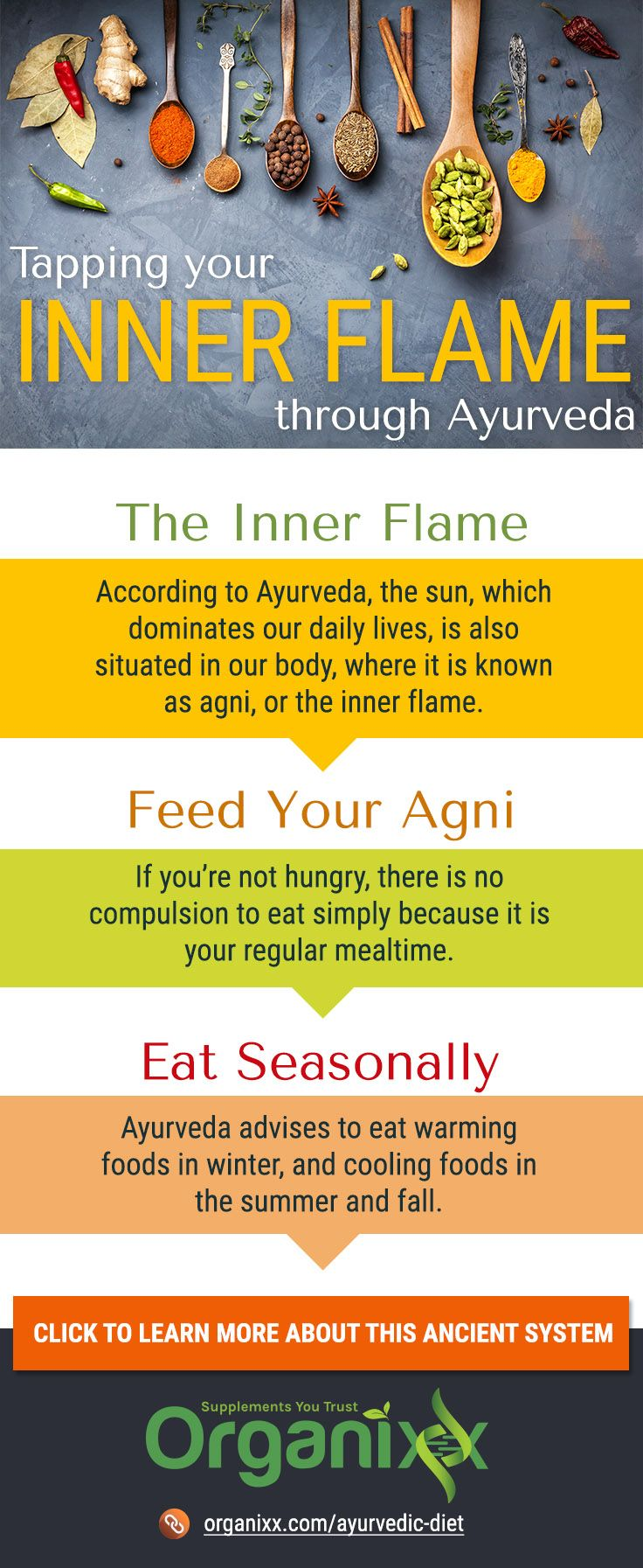 AYURVEDIC DIET: Ayurveda is not just another method of disease treatment. Practitioners describe it as an intricately conceived system of inner science that involves positive health and natural living. The goal of this healing tradition is to show how to harmonize ourselves with the greater Universe that exists within and around us. Click on the infographic above to discover more about Why Food Is So Important in Ayurvedic Medicine, The 3 Food Types That Affect the Body According to…