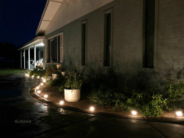 Outdoor Cafe Lights Outdoor Cafe Landscape Lighting Cafe Lights