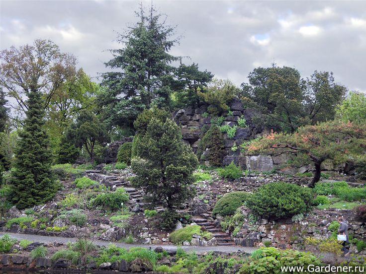 Ботанические сады Утрехтского Университета   Ландшафтный дизайн садов и парков