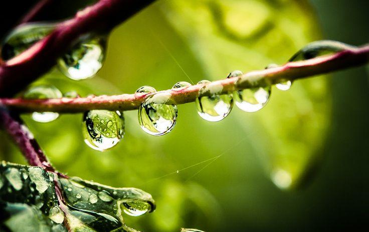♫♪♫ It's raining again. ♫♪♫