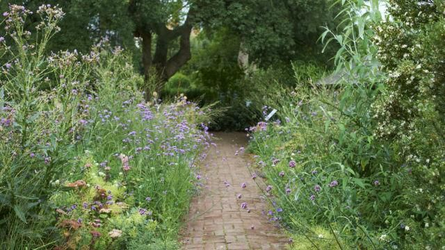 Butterfly Walk at Chelsea Physic Garden. Photo copyright: Charlie Hopkinson
