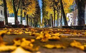 Ψυχολογία και ομορφιά: Φθινοπωρινή Μελαγχολία     Ο Σεπτέμβριος είναι...