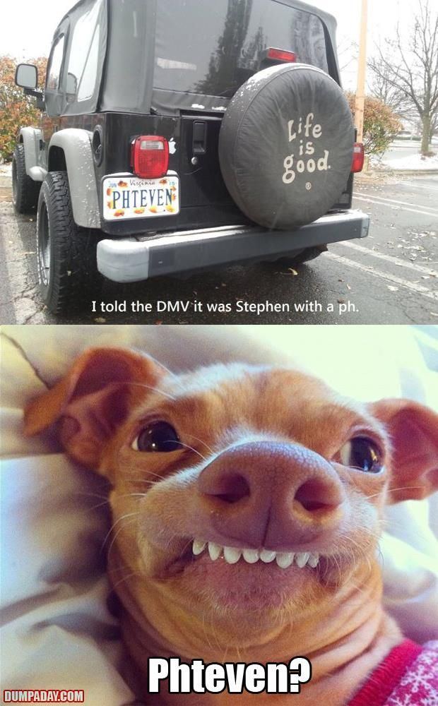 Phteven? The dogs name is Tuna! | Laughing Hysterically ... - photo#9