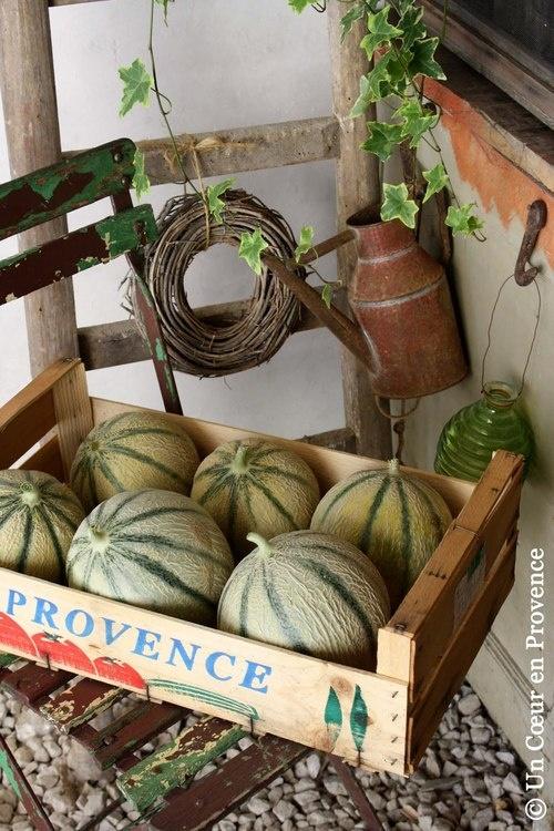 melon-enfance-provence