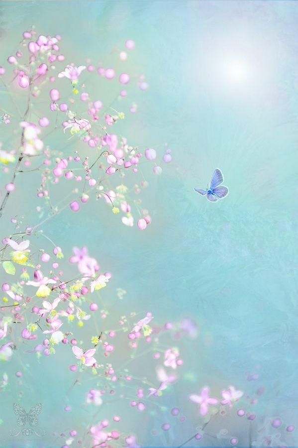 ~ Fairy Garden ~ by Jasna Matz on 500px