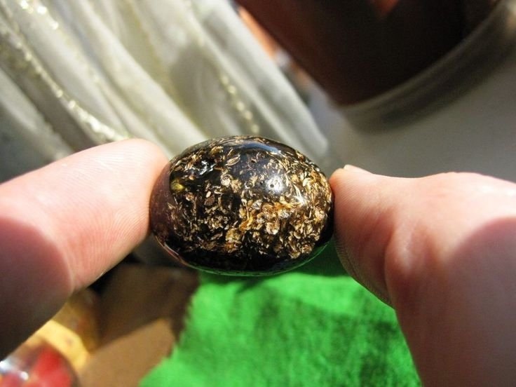 Natural Baltic Amber BUTTERSCOTCH Black Large Beads 9.8 gr