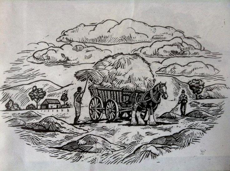 woodcut style for a bread packet by tony Pyrzakowski www.illustrations.com.au facebook/pyrzakowskiscratchboardart