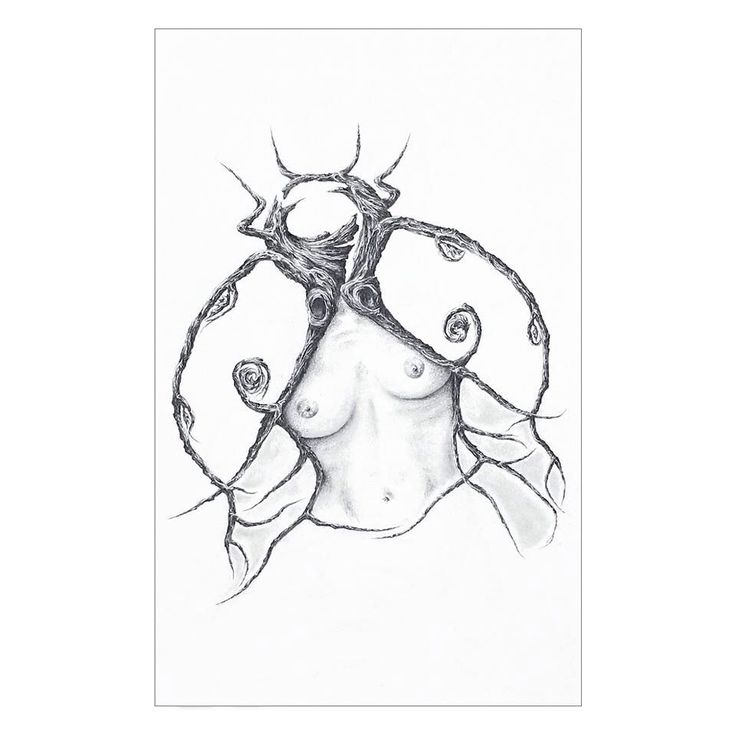 LADYBUG by Nathalie Lagace. At Gallery Arch Enemy Arts, contact archenemyarts@gmail.com. #drawing #artcollectors #graphite #art #phillyart #archenemyart