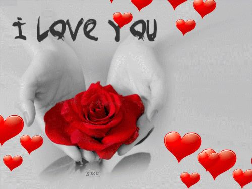 3D Gif Animations Free download i love you images photo