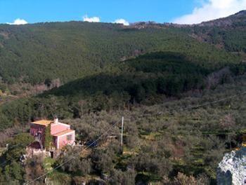 Ferienhaus in Montemagno / Calci