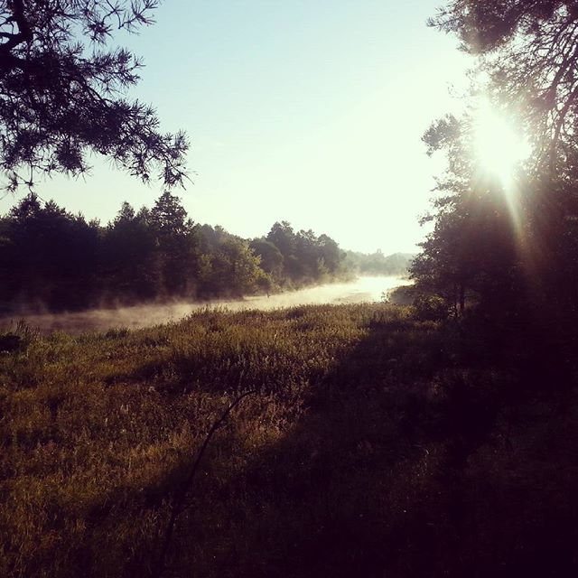 Mgła na rzece Wkrze. Fog over the Wkra river.  #dzieńdobry #goodmorning #spacer #walk #lato #summer #rzeka #river #wkra