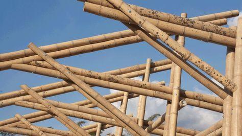 Diseño y construcción de vivienda en Bambú Guadua - Bambusa Estudio