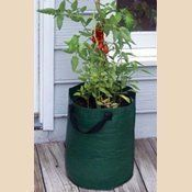 Bosmere K715 Patio Tomato Planter Bag, Green By Bosmere. $10.44. Made From  Wipe