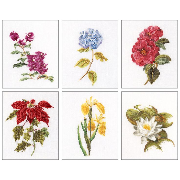 Thea Gouverneur counted-cross-stitch Kit Floral Studies 7 On Linen