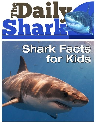 The Daily Shark - Shark Facts for Kids