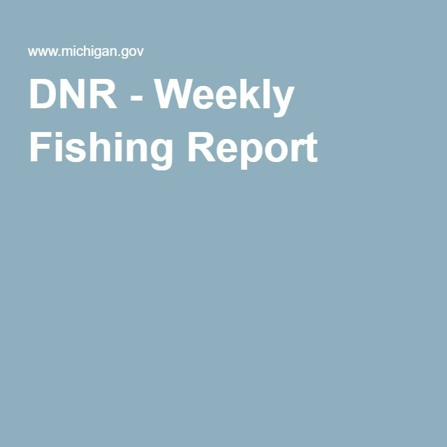 35 best michigan fishing images on pinterest fishing for Michigan dnr fishing report
