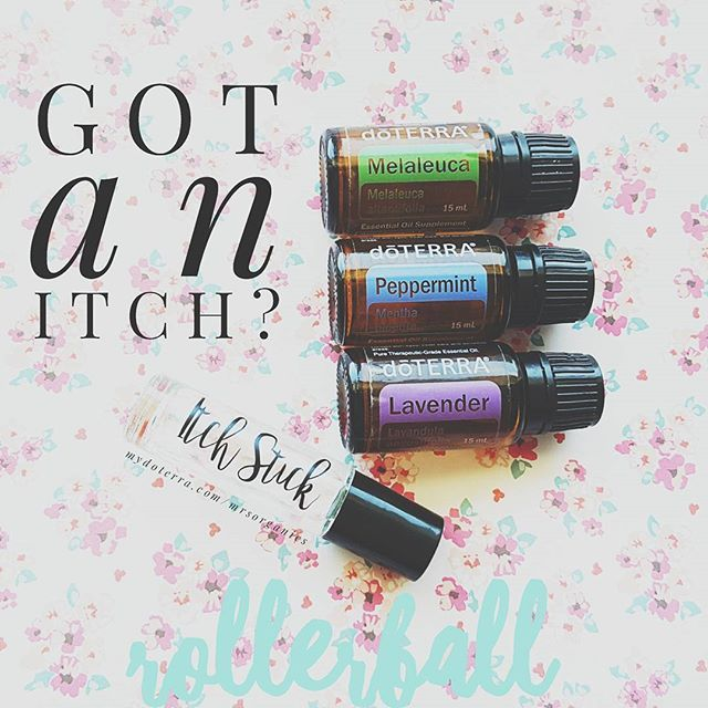 Itch relief roller ball -- 10 melaleuca, 10 lavender, 10 peppermint and top off with fractionated coconut oil