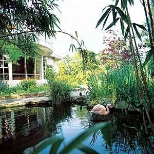 Kensington Roof Garden complete with flamingos. London