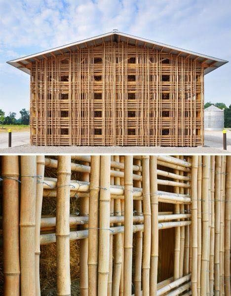 Bamboo House Design Ideas: 17 Best Bambu Images On Pinterest