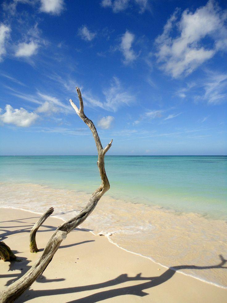 70 best Cuba images on Pinterest Cuba, Havana cuba and Cuban recipes - invitation letter for us visa cuba
