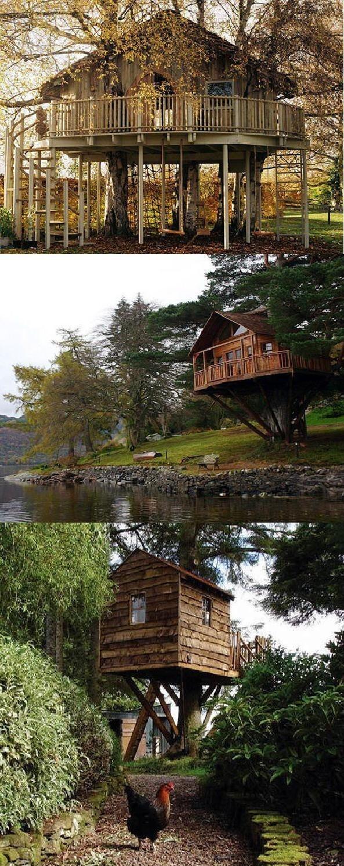 Pin by b rbara peirano as s on casas en el arbol pinterest - Casas en arbol ...