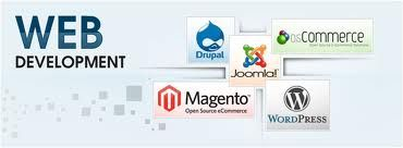 This presenting of products or business and appearance of a website, as stated above depends majorly on web development. Website development or web development is the development of the web pages and other complicated applications for the website to enhance its appeal to the clients and to make it more interactive to them.