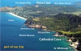 Image result for whitianga nz