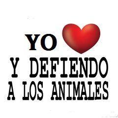 NO al maltrato animal.