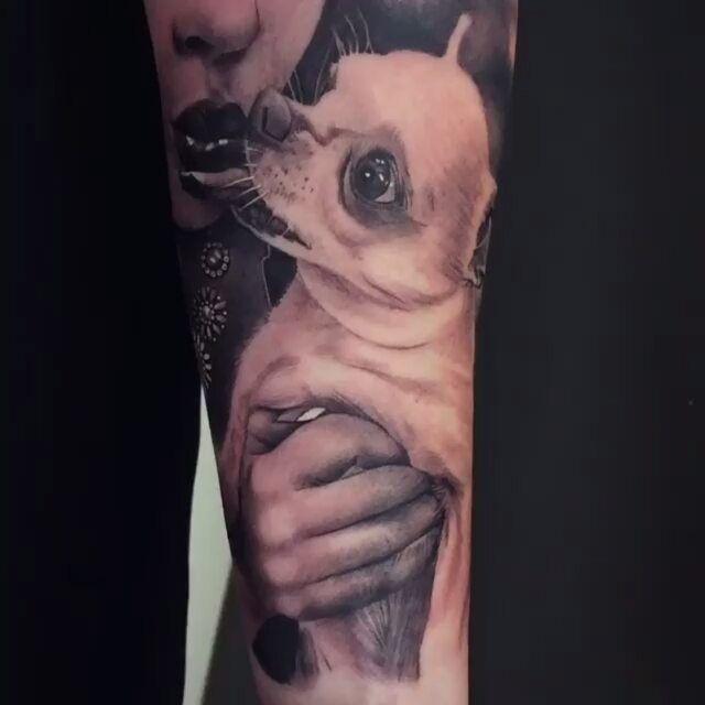 21ee9a07ee419 Dog Kiss #Tattoo by #TattooArtist @gunnar_v_tattoo_artist #gunnarv  #dogtattoo #tattoos #chihuahua #chihuahuatattoo #tattoolov… | Tattoos and  Piercings.