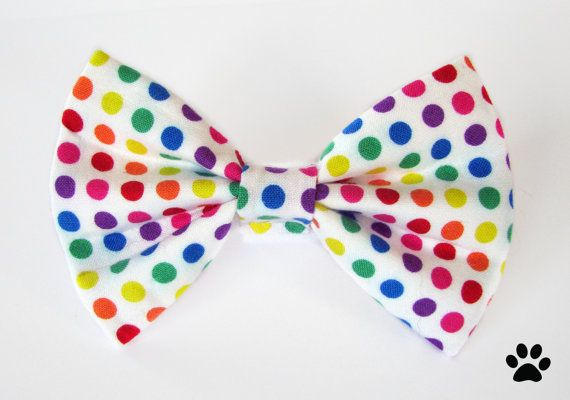 Rainbow Polka Dots - cat bow tie, dog bow tie, pet bow tie on Etsy, $10.36