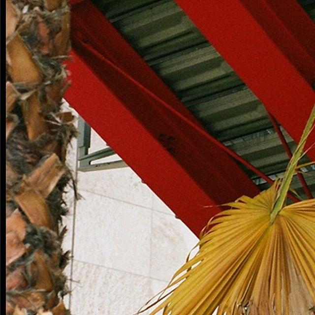 @STRIPIS_ MAGAZINE — #STRIPISPHOTOGRAPHER Claudia Zalla - follow ...